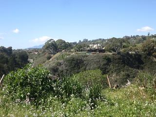 Arroyo Burro County Beach Park Santa Barbara Ca