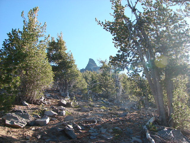 Mt. Thielsen Trail