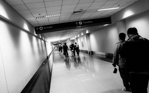Terminal 3 Arrival Area