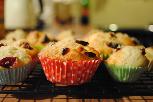 apple & cranberry muffins | by little nollie