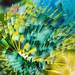 Impressionist Star Worm