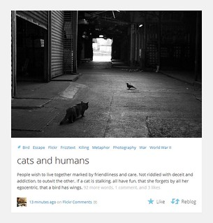 cats-and-humans-Screenshot | by Frizztext