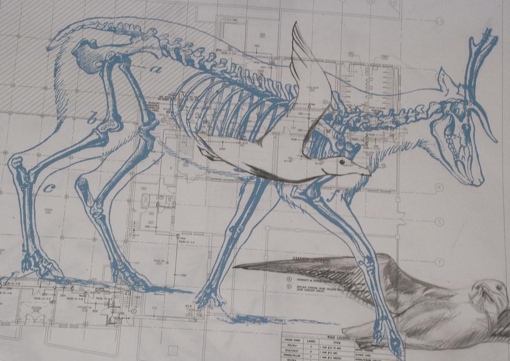 Deer blueprint screen print and graphite on found blueprin flickr deer blueprint by elizabeth oscar maynard malvernweather Images