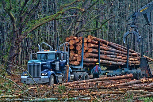 Kenworth Logger | by raymondclarkeimages