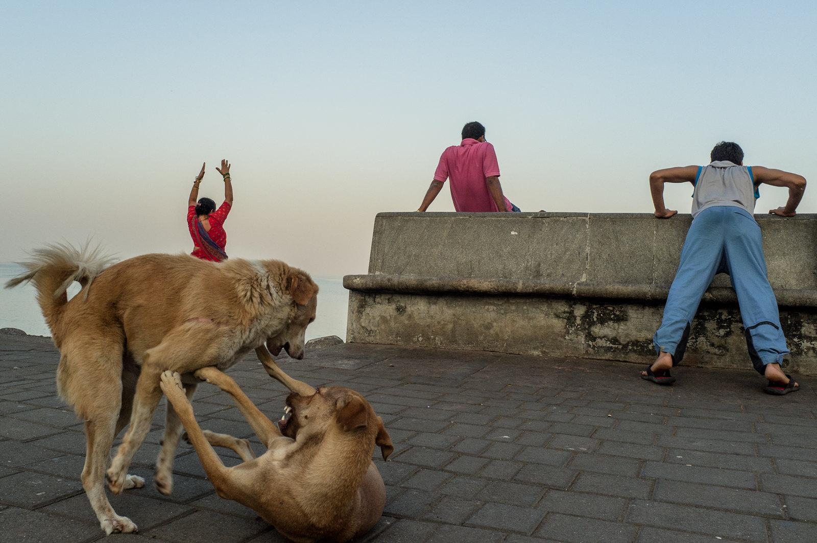 Marine Drive, Mumbai - 2012 | by iontrop
