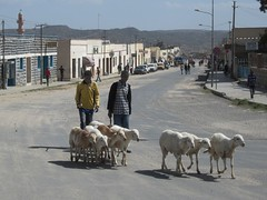 Dekemhare Road