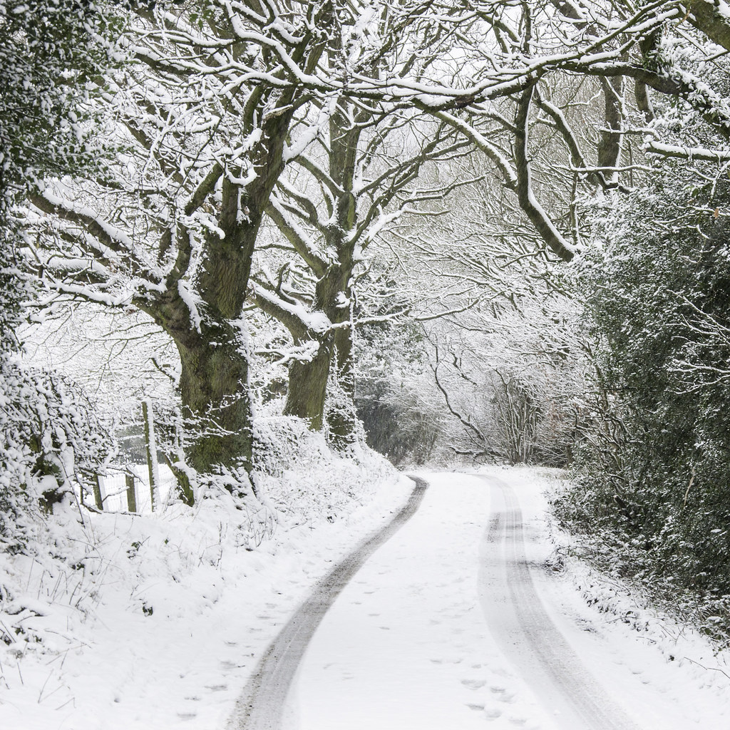 winter city lane with - photo #34