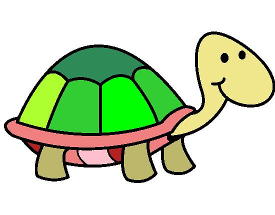 Kaplumbağa Boyama Uzun ömürleri Ile Dikkat çeken Açlığa Da Flickr