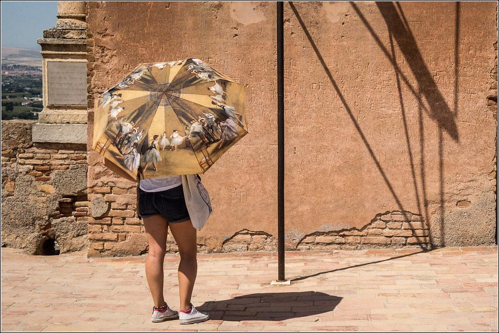 Alhambra visitor