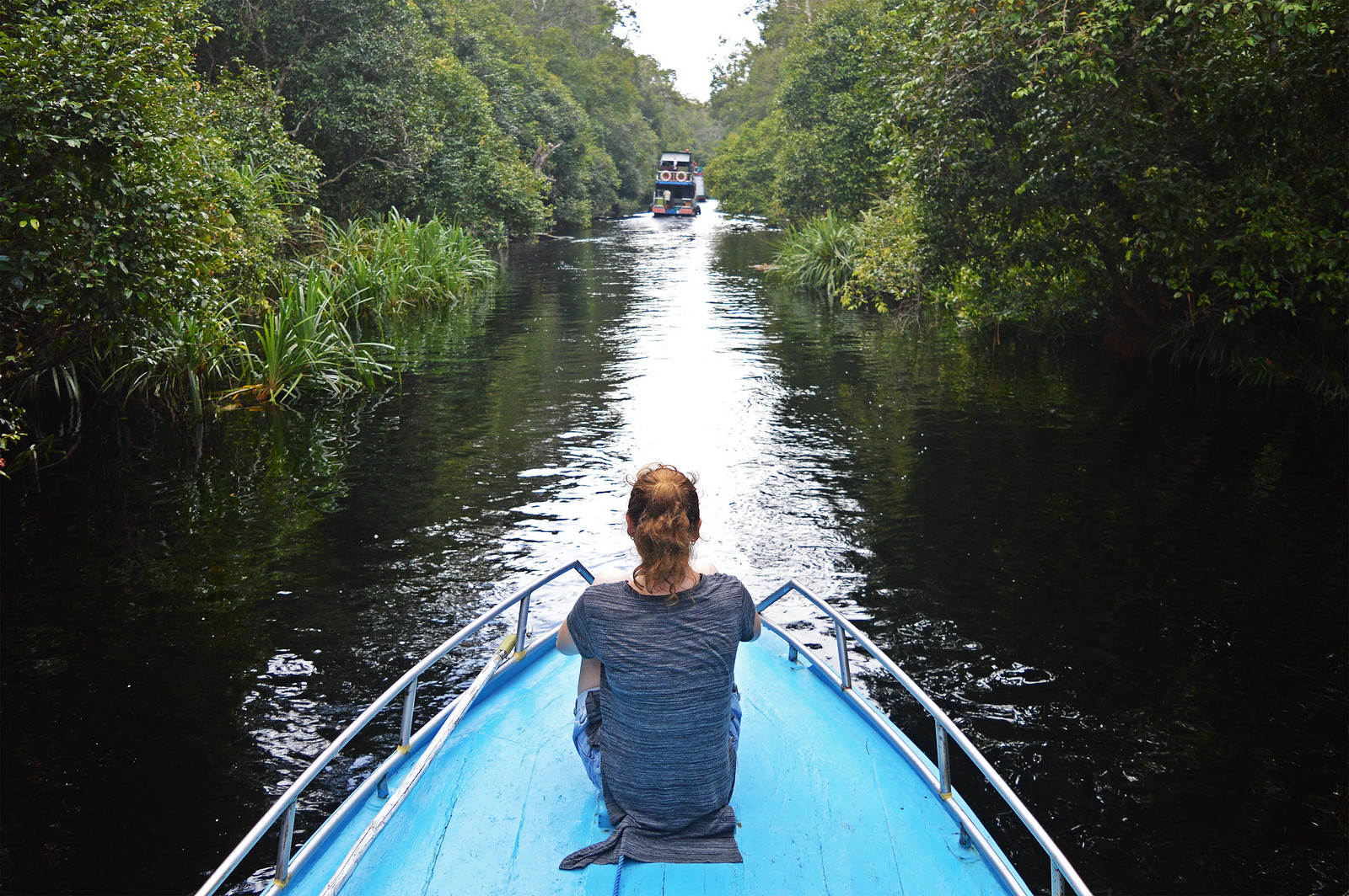 Sekonyer River in Borneo.