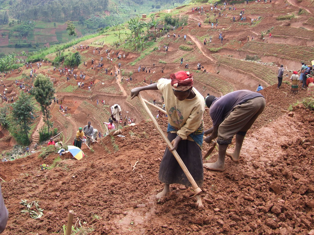 Women and men in northern rwanda work on a public works si for Soil erosion prevention