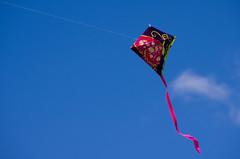 Kites Fly High ! by RED EYE Fotografia