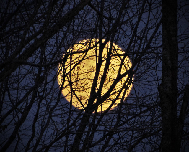 Full Moon Rising - EXPLORE #465!  :)