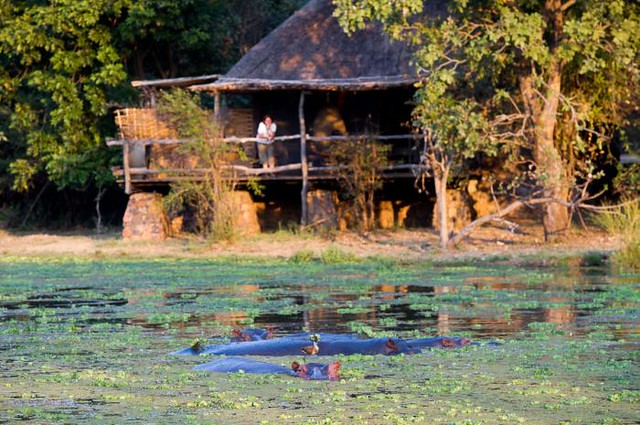Mfuwe Lodge, South Luangwa National Park, Zambia