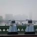 Two Daleks on Westminster Bridge