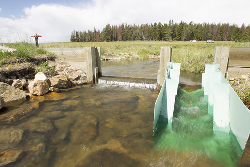 A fish ladder installed in an irrigation structure