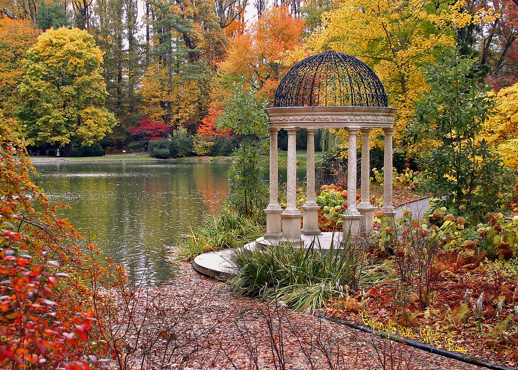 Gazebo in Autumn with Fall Foliage by Large Lake at Longwo ...