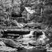 Glade Creek Grist Mill, WV
