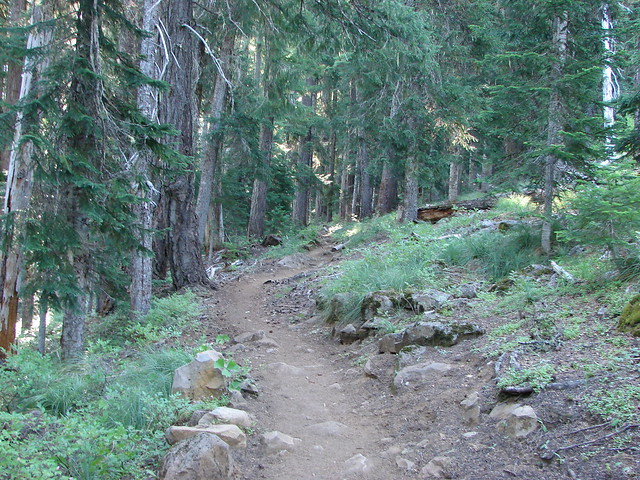 Duffy Lake Trail