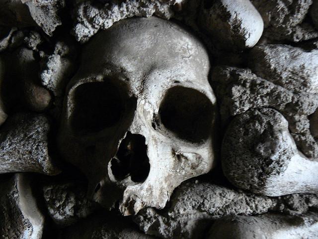 Calavera de la Capilla de los huesos de Campo Maior (Alentejo, Portugal)
