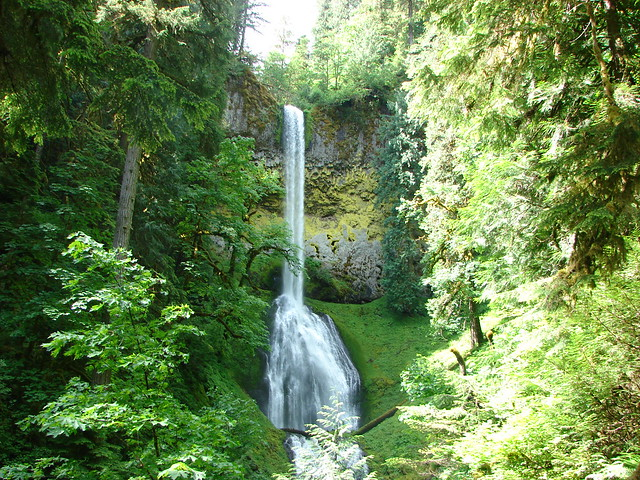 Pup Creek Falls