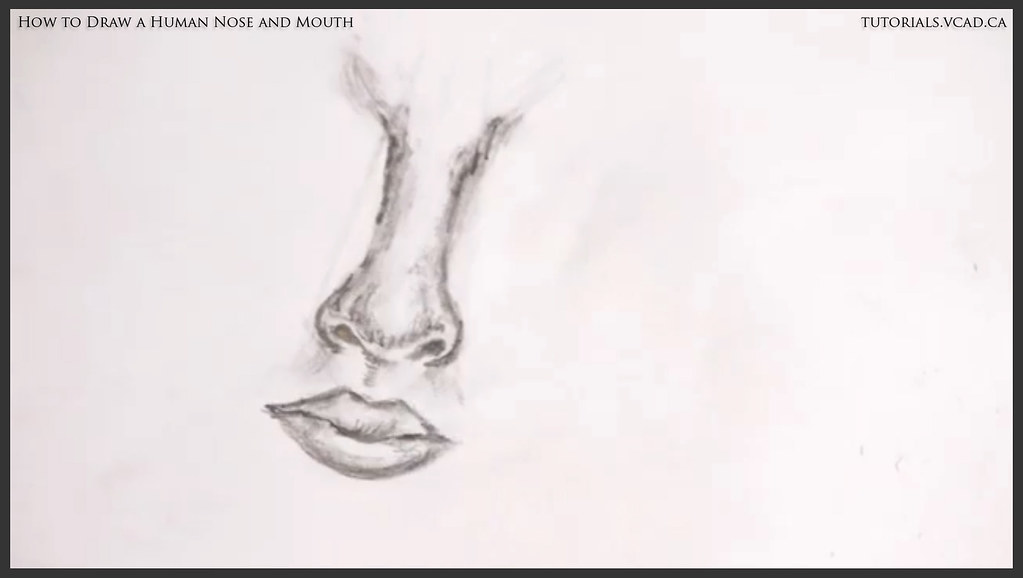 Learn how to draw a human nose and mouth 016 visual colleg flickr drawingtutorials learn how to draw a human nose and mouth 016 by drawingtutorials ccuart Choice Image