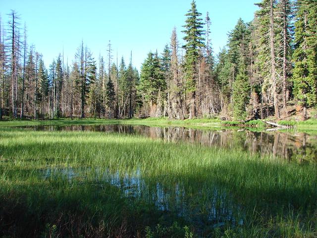 Patjens Lake #1
