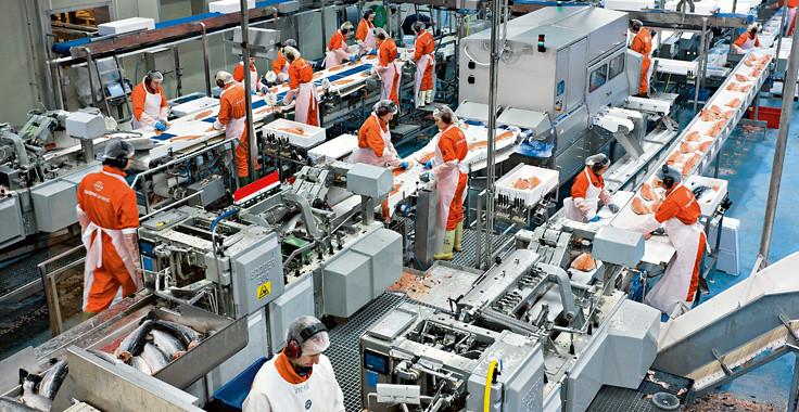 an toàn trong sản xuất công nghiệp