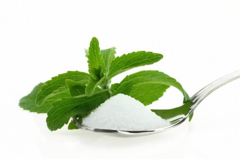 Manfaat Kandungan Sweetener Stevia
