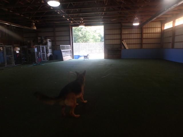 09/08/16 Hula Hoop Play!
