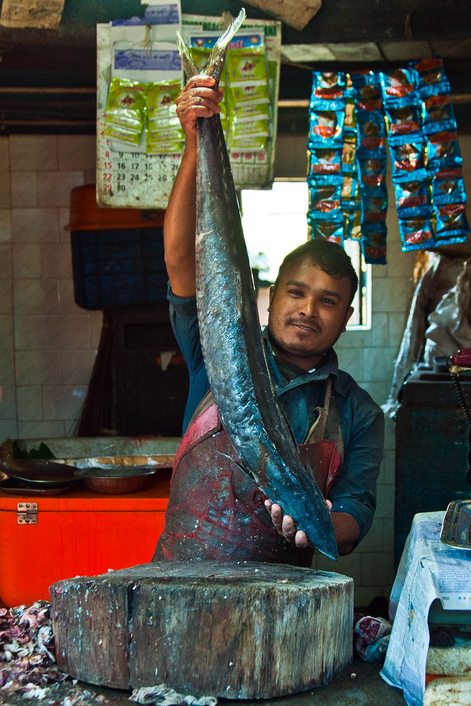 Seer fish at coonoor market also known as king mackerel for King fish market