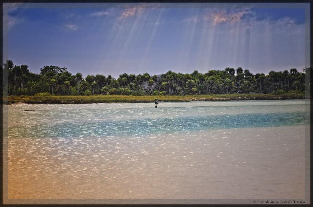 Boca Paila Reserva De La Biosfera Siaan Kaan Quintana Ro