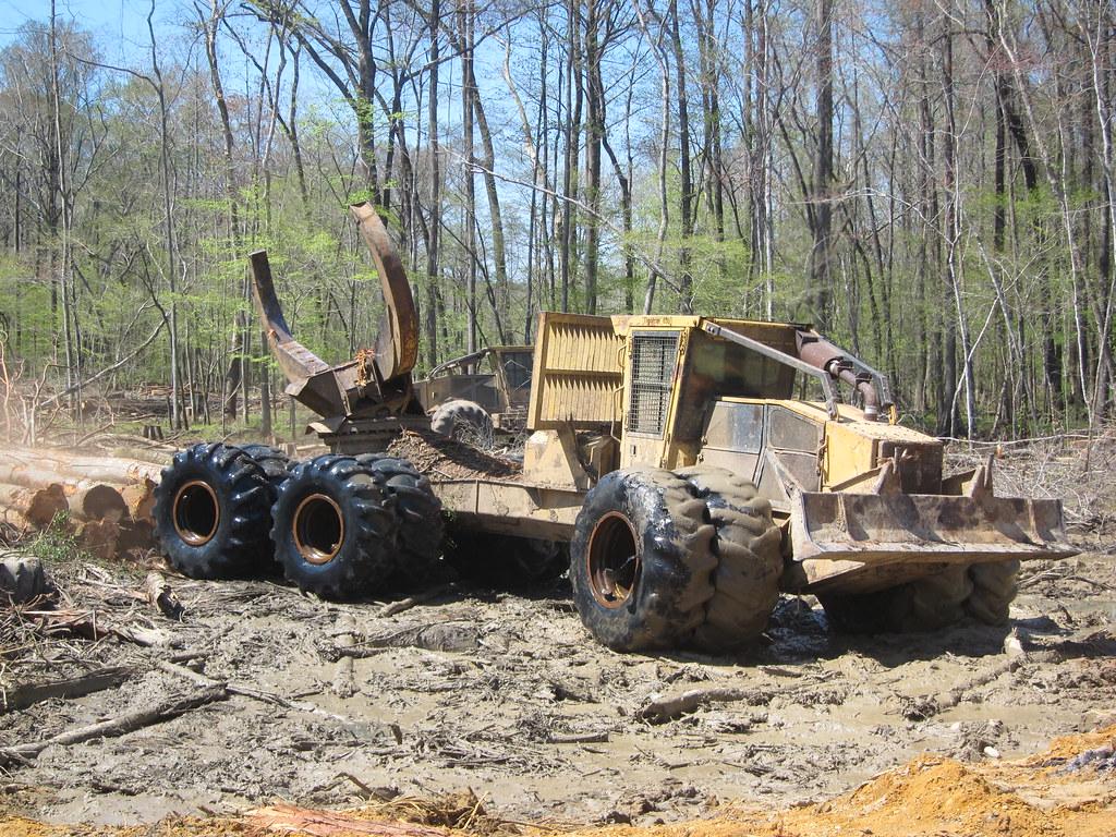 Swamp Logging David Tegart Flickr
