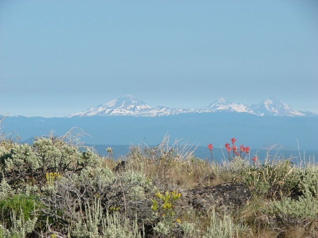 Paintbrush on Pine Mountain with Broken Top and The Three Sisters in the distance