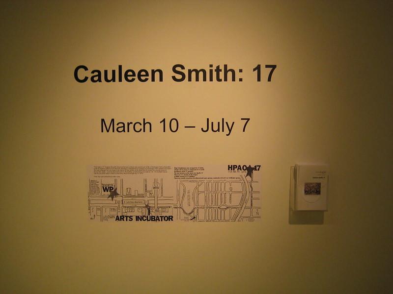 Cauleen Smith: 17