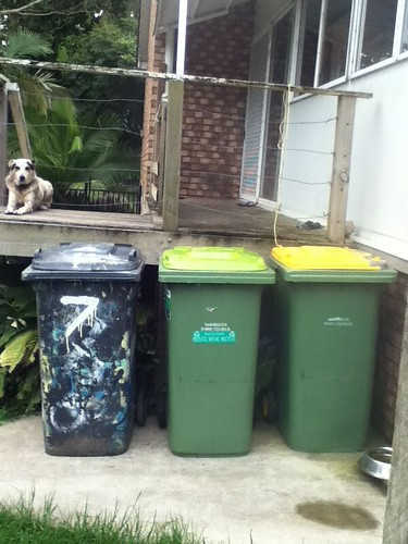 Free Dog Waste Bags Chelmsford