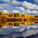 Deschutes River Rorschach