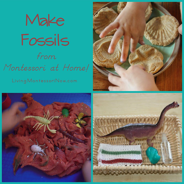 Make Fossils from Montessori at Home