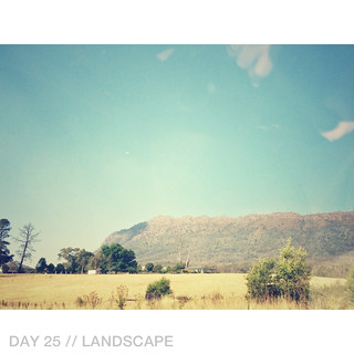 Day 25 // Landscape | by 74 Lime Lane