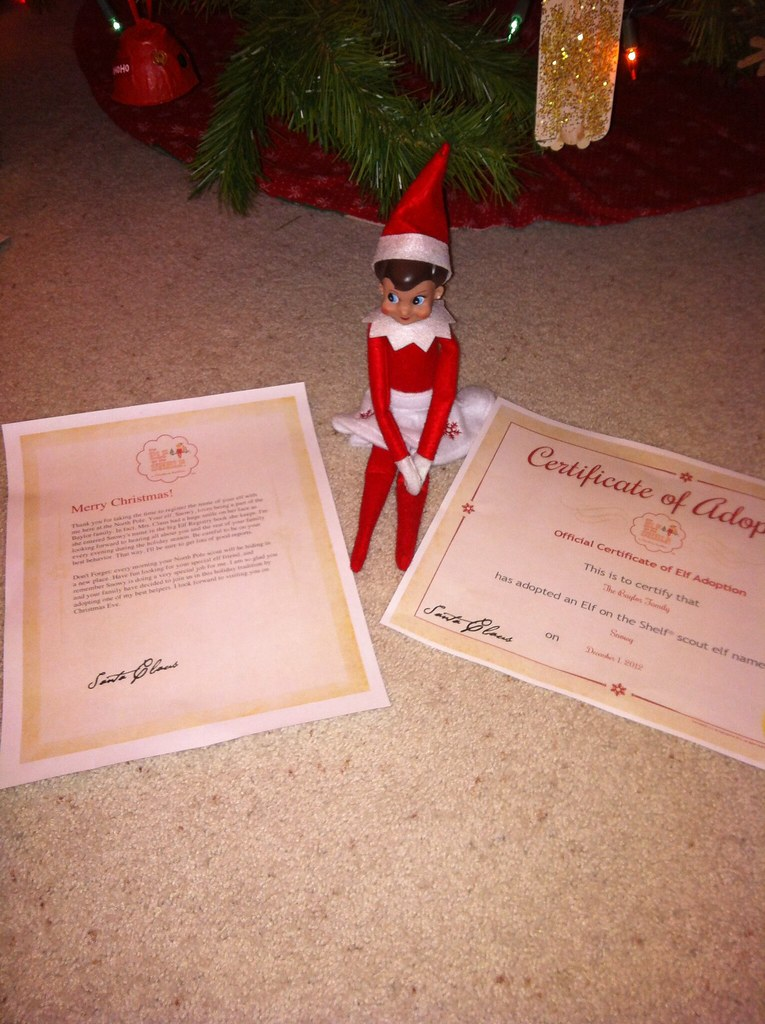 2012 Elf on the Shelf - Snowy | Day 15: Snowy brought her ad ...
