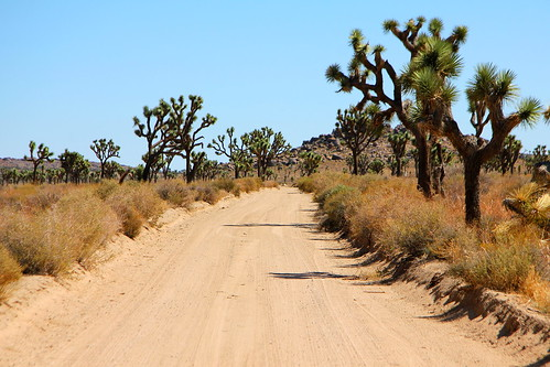 100% free online dating in joshua tree Cowboy paradise in pioneertown ~ the olive adobe free long distance we went on hikes in the neighborhood and did the short drive to joshua tree.