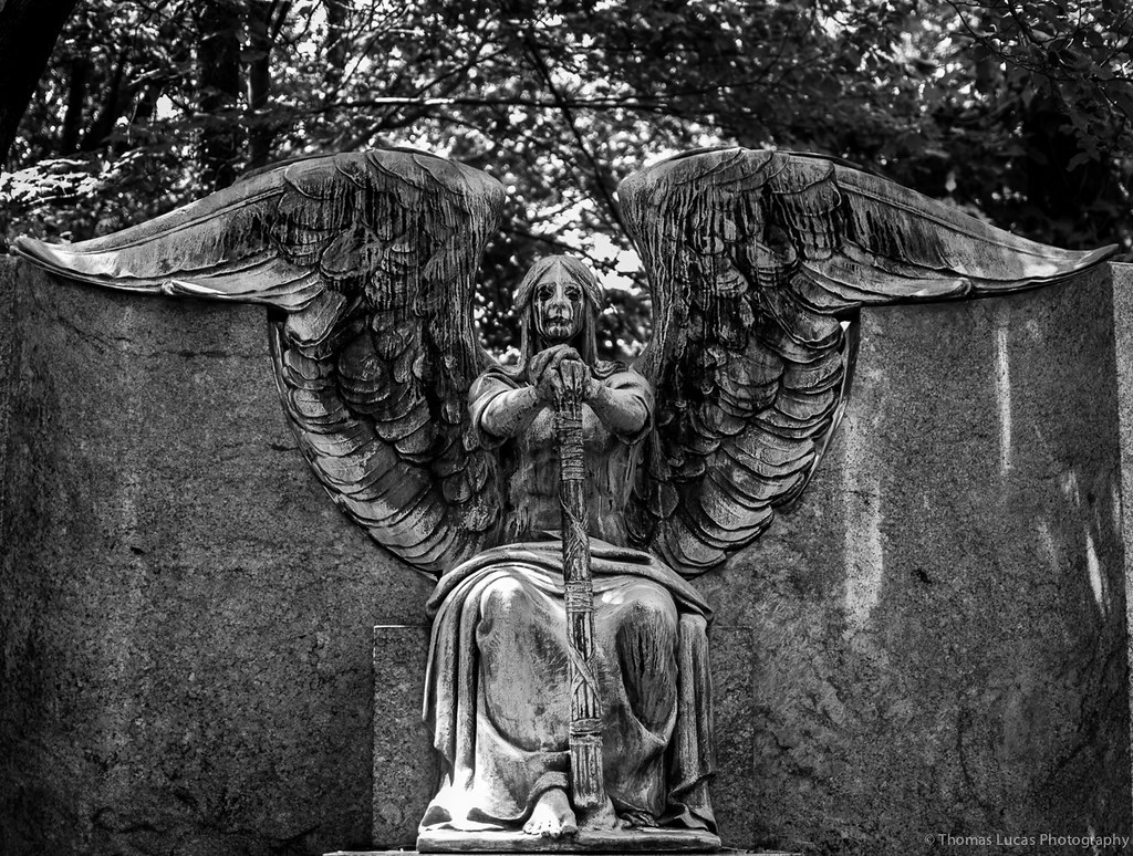 Image result for graveyard angel