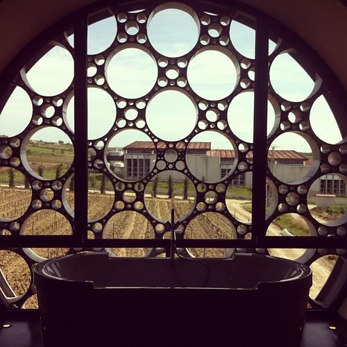 Un bany entre vinyes @mastinell #enoturisme #Penedès #CapitaldelVi