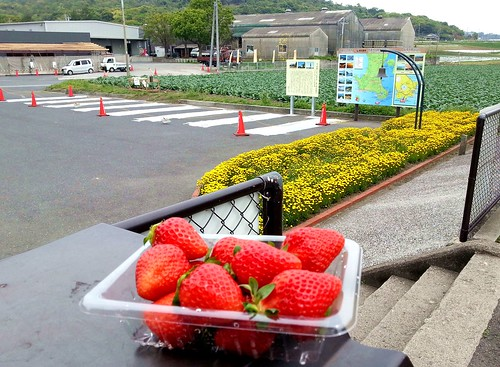 JR西大山站(日本最南端的車站)-鹿児島縣指宿市-Nishioyama station (the southern …  Flickr
