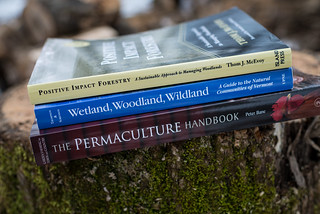 Woodland Research Reading | by goingslowly