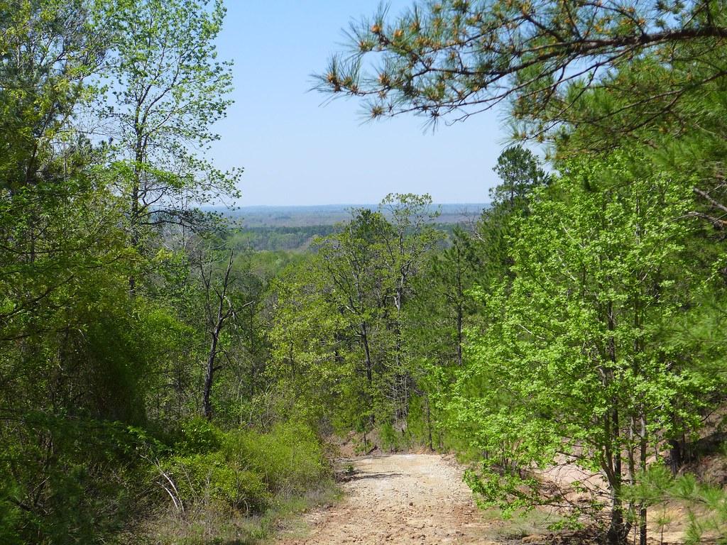 Swingers in east mountain texas