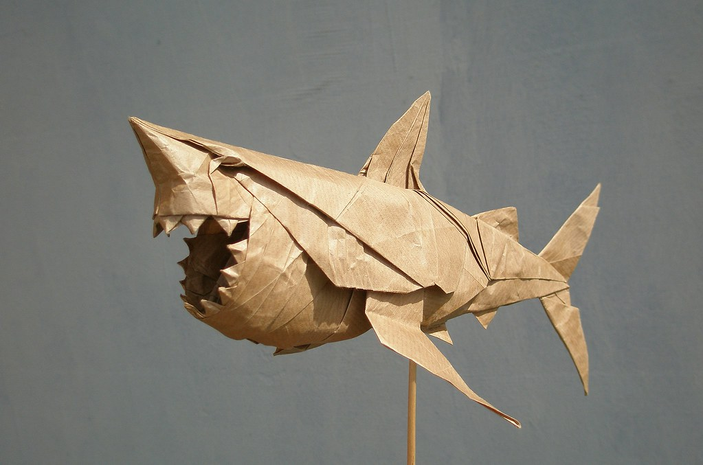Great White Shark By Nguyn Hng Cng Folded By Artur B Flickr