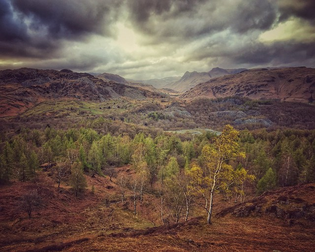 Holme Fell iPhone