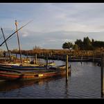 port de catarroja amb lluna (albufera.8)