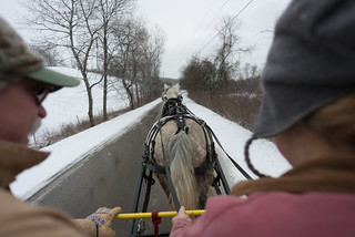 Mark & Patty Driving Horse Cart | by goingslowly